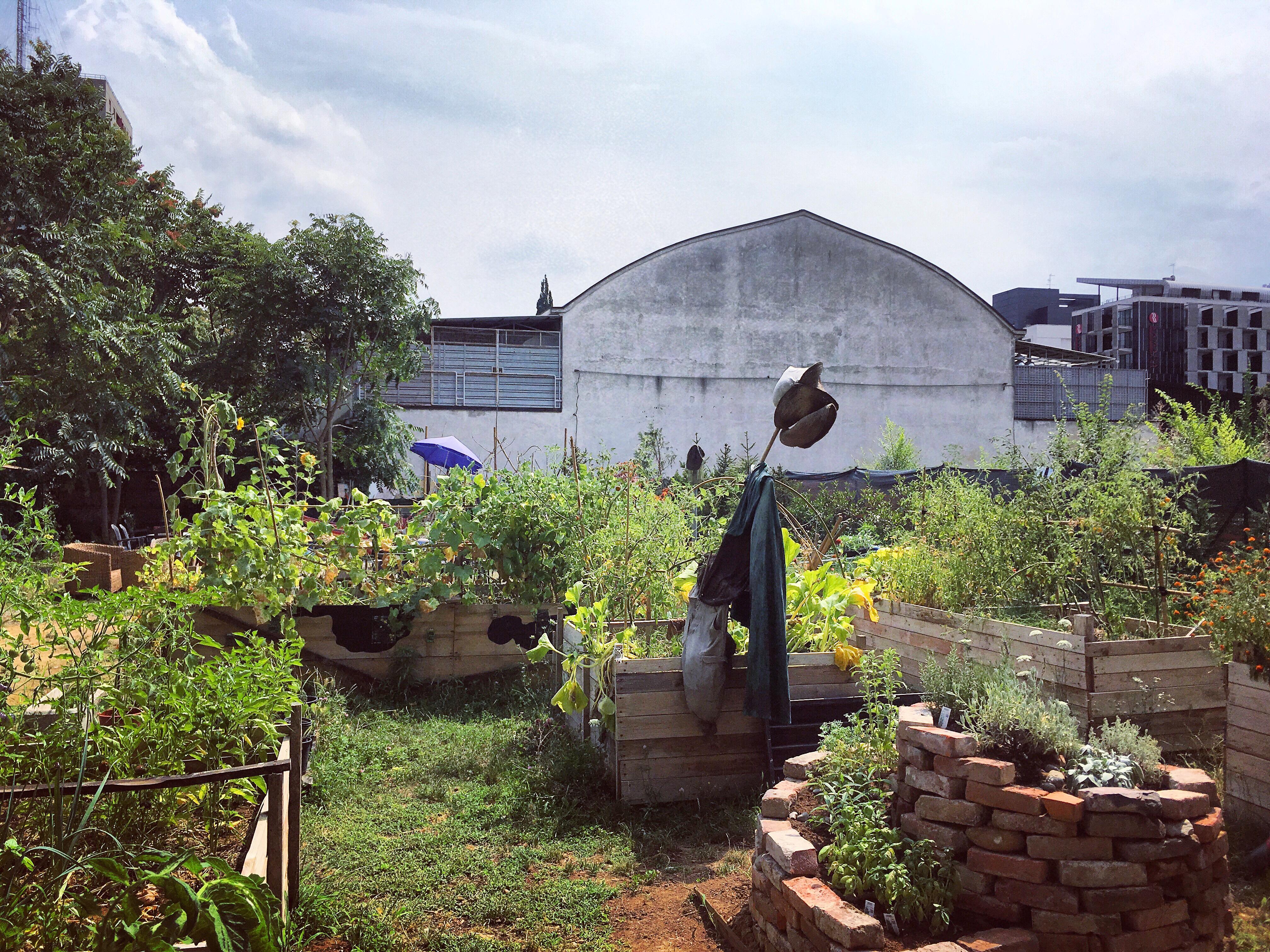 Il Giardino Nascosto Orto di Quartiere